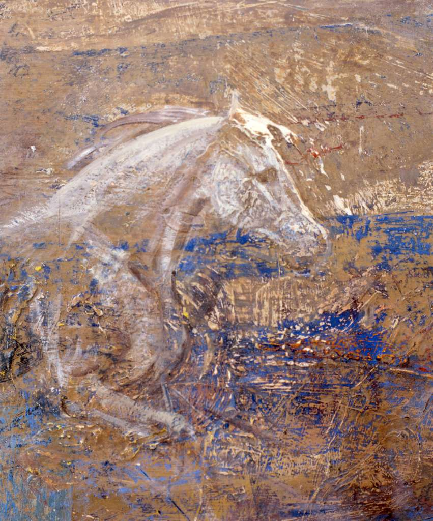 Image No: Gray horse in wood